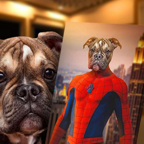 SpiderPet // Custom Pet Portrait