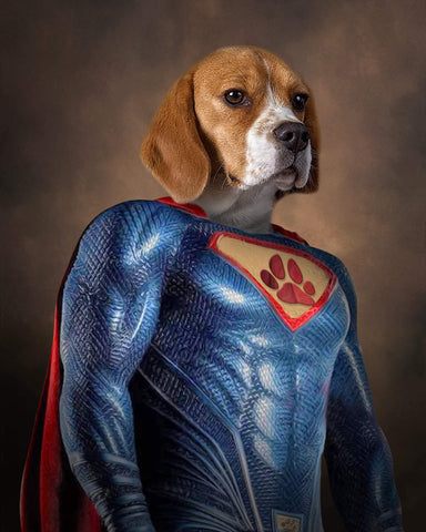 SuperPet // Custom Pet Portrait