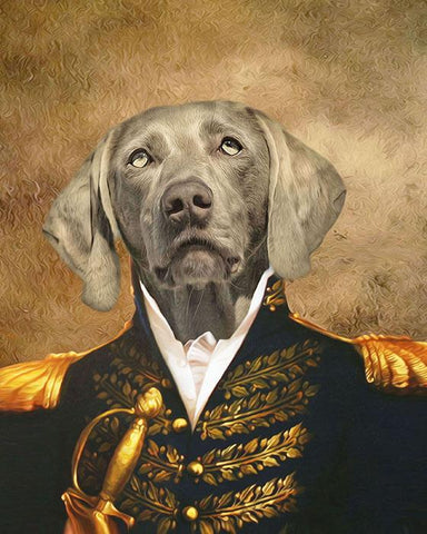Image of dog portraits