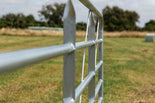 12ft Barred Cattle Gate