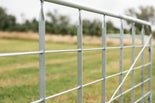 14ft Barred Sheep Gate (HDG)