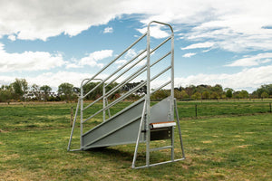 Cattle Loading Ramp