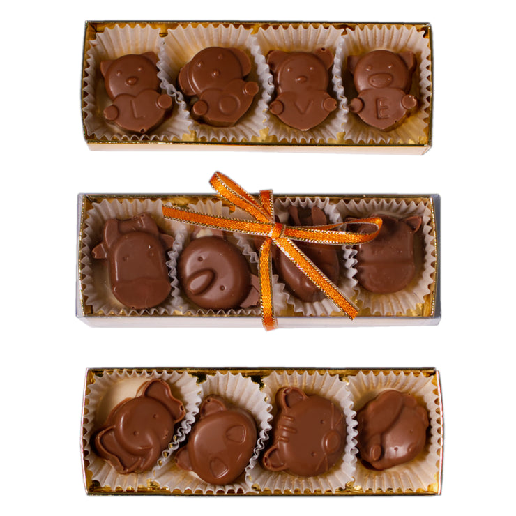 Chocolates for kids 1 packet (4 pcs)