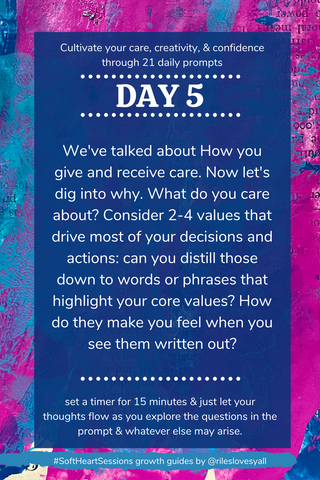 We've talked about How you give and receive care. Now let's dig into why. What do you care about? Consider 2-4 values that drive most of your decisions and actions: can you distill those down to words or phrases that highlight your core values? How do they make you feel when you see them written out?