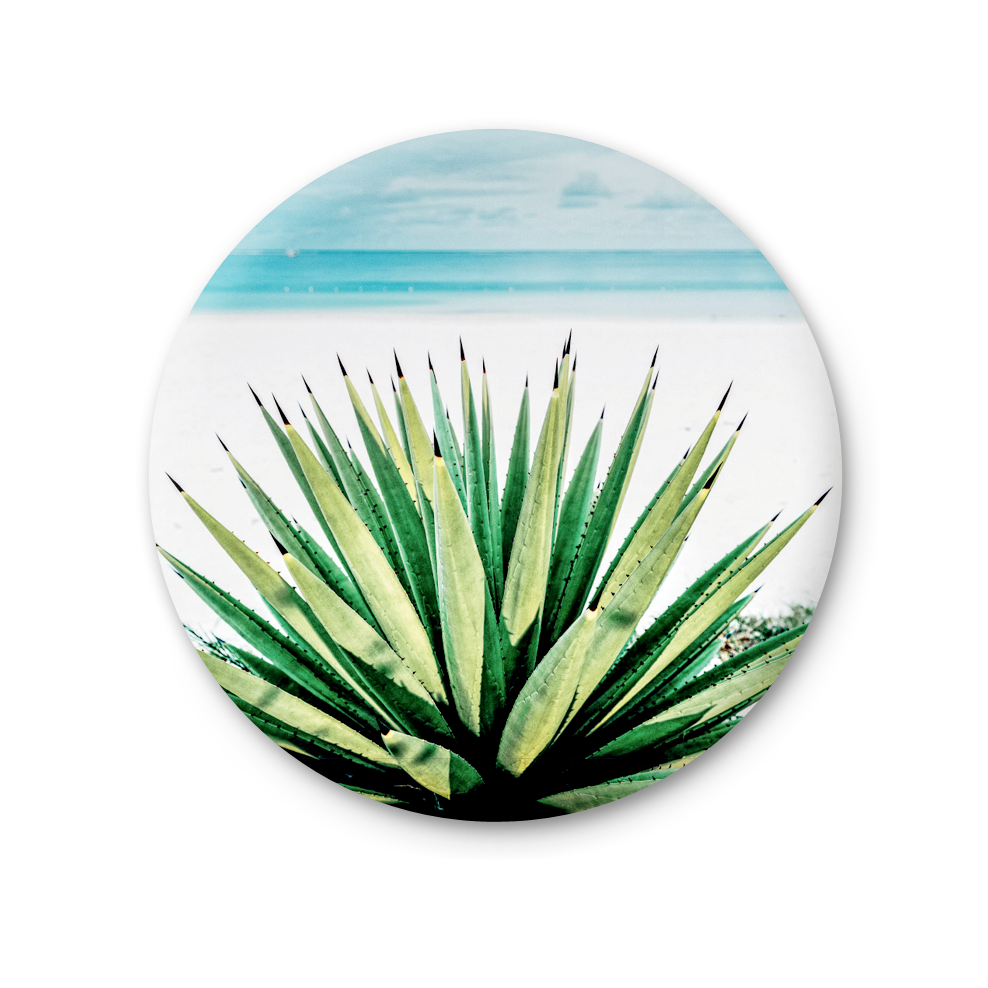 Round Magnet - Agave