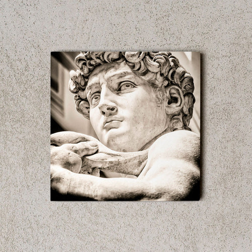 MiniWall - David di Michelangelo