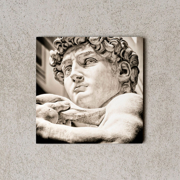 MiniWall David di Michelangelo | Simebooks