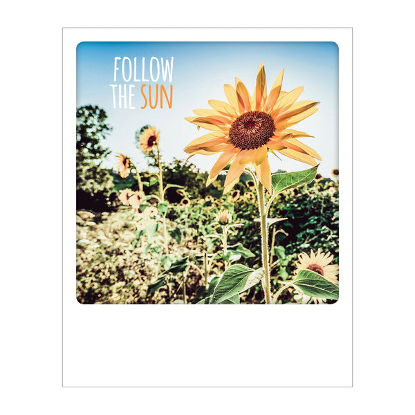 Polaroid Postcard, Sime © Alessandro Saffo / Follow the Sun