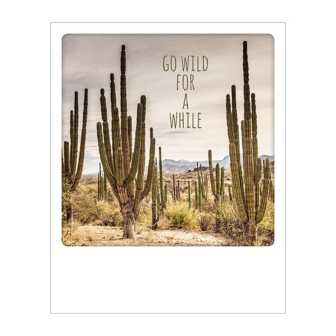 Polaroid Postcard, Sime © Olimpio Fantuz / Go Wild for a While