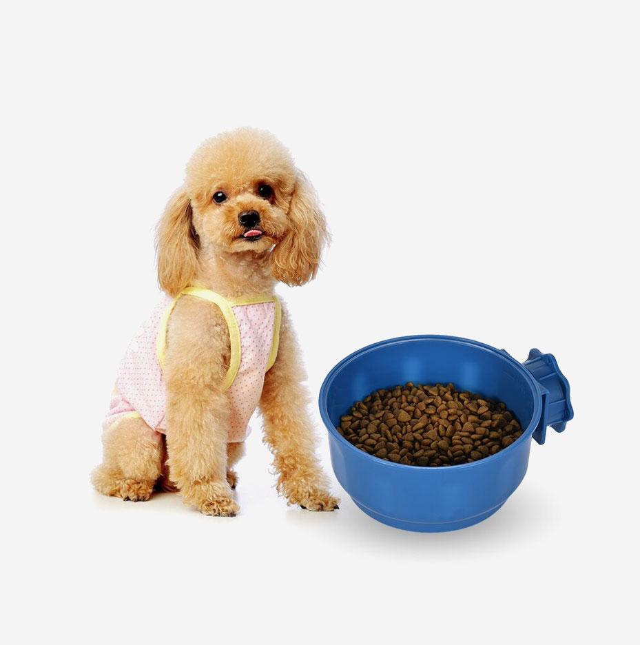 Wellbeloved Dry Dog Food