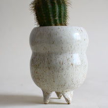 Load image into Gallery viewer, Three-legged Planter Pot