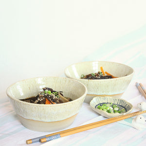 Set of 2 Speckled Noodle or Soup Bowls