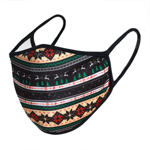 Load image into Gallery viewer, Multi Stripe Christmas 3-Layered Face Mask-PM0253