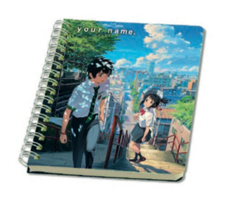 Your Name - Notebooks
