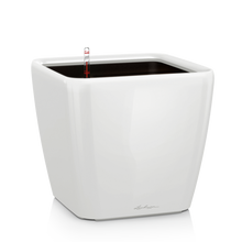 Load image into Gallery viewer, Lechuza QUADRO 43 LS <br> All-in-One <br> Smart-Watering Planter