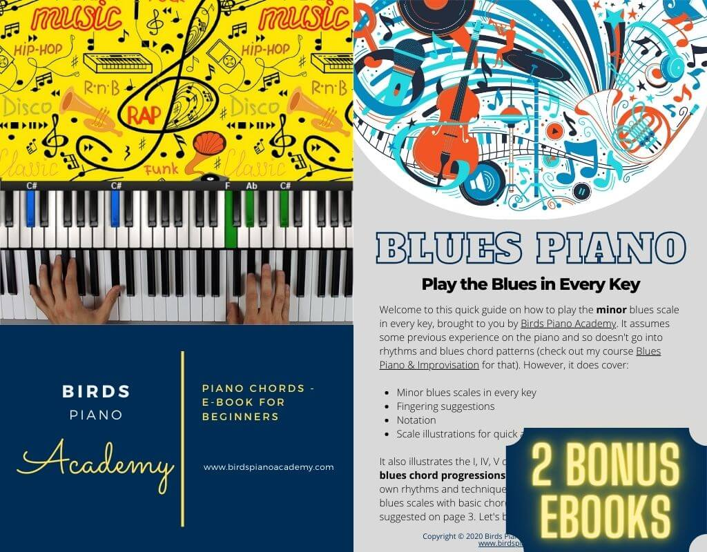 The Piano Chords eBook for Beginners and The Blues Piano eBook