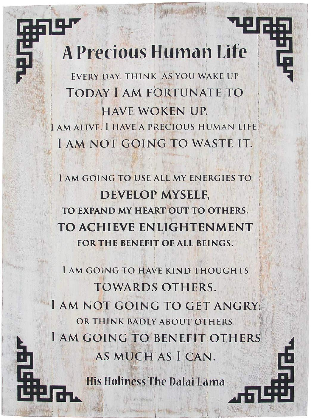 Dalai Lama Quotes ~ Wooden ~ A Precious Human Life ~ Inspirational Message Wall Decor - DharmaObjects