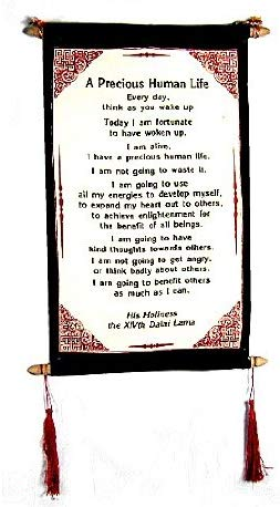 Dalai Lama Quotes ~ A Precious Human Life ~ Inspirational Message Wall Decor Hanging - DharmaObjects