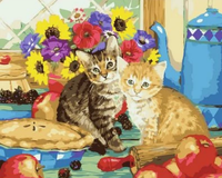 Cat Diy Paint By Numbers Kits Uk XQ2489