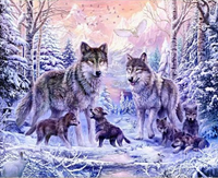 Animal Wolf Diy Paint By Numbers Kits Uk XQ3782