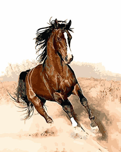 Horse Diy Paint By Numbers Kits Uk WM-1105