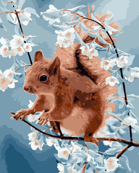 Squirrel Diy Paint By Numbers Kits Uk WM839