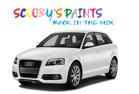Audi-A3-red-blue-green-black-silver-touch-up-paint-spray-aerosol