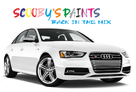 Audi-A4-S4-red-blue-green-black-silver-touch-up-paint-spray-aerosol