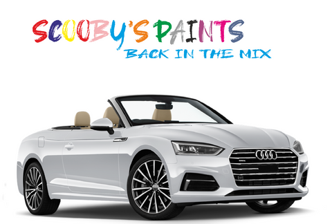 Audi-A5-Cabrio-red-blue-green-black-silver-touch-up-paint-spray-aerosol