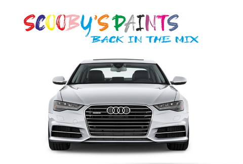 Audi-A6-red-blue-green-black-silver-touch-up-paint-spray-aerosol