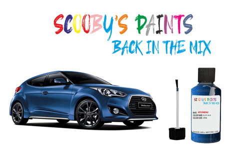 Hyundai Veloster Car Touch Up Paint Scratch repair kit