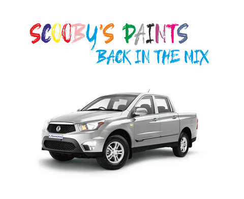 Ssangyong Actyon Touch Up Paints & Aerosol Spray paint