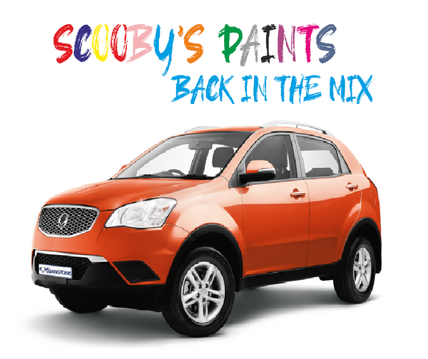 Ssangyong Korando Sports Touch Up Paints & Aerosol Spray paint
