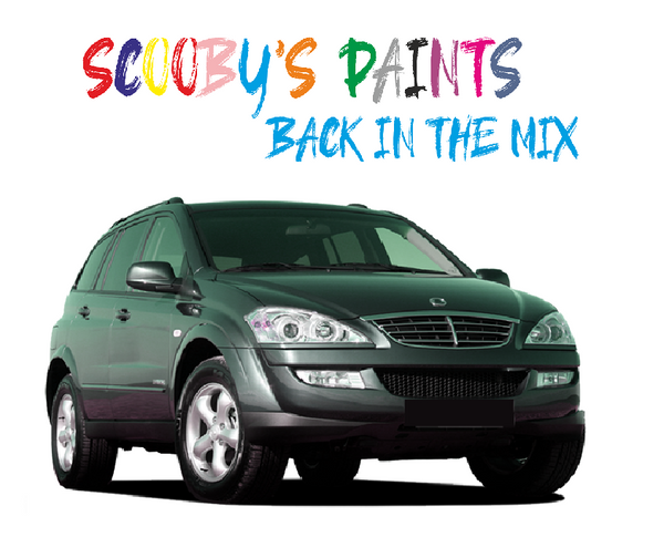 Ssangyong Kyron Touch Up Paints & Aerosol Spray paint