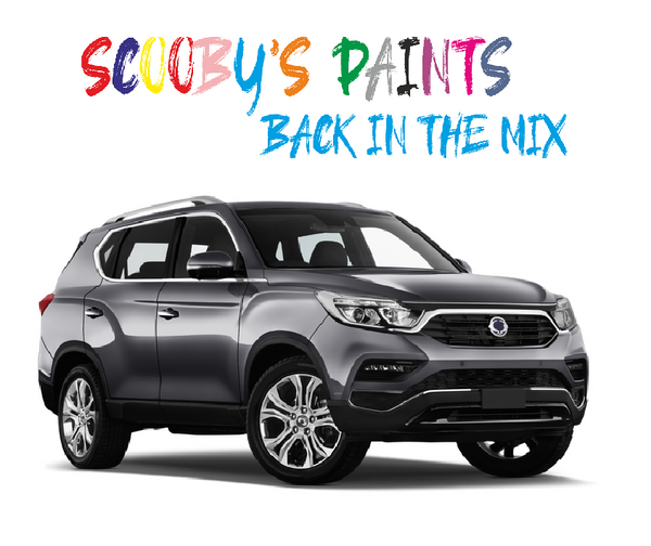Ssangyong Rexton Touch Up Paints & Aerosol Spray paint