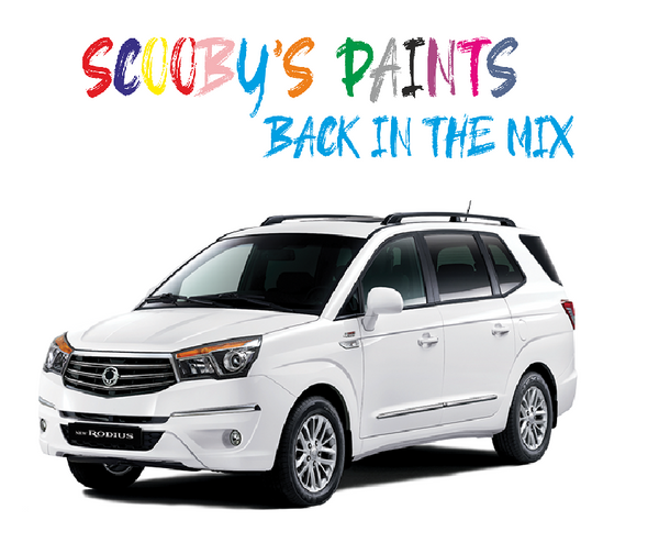 Ssangyong Rodius Touch Up Paints & Aerosol Spray paint