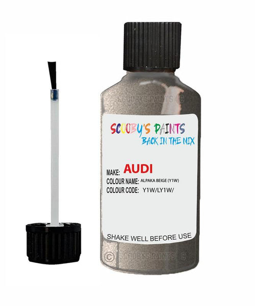 Audi A4 Alpaka Beige Code Y1W Touch Up Paint