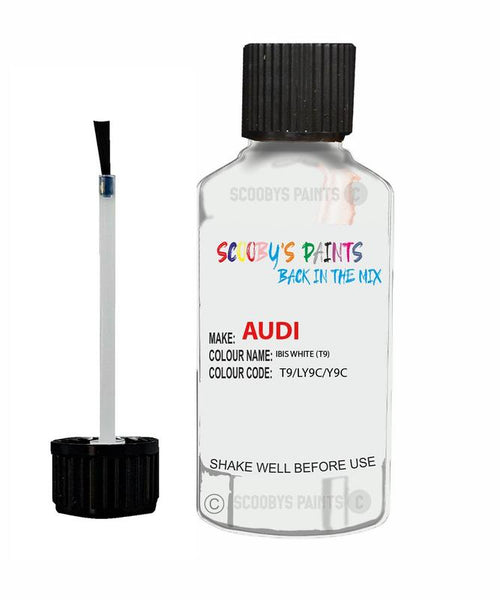 Audi A5 Sportback Ibis White Code T9 Touch Up Paint 2006-2018