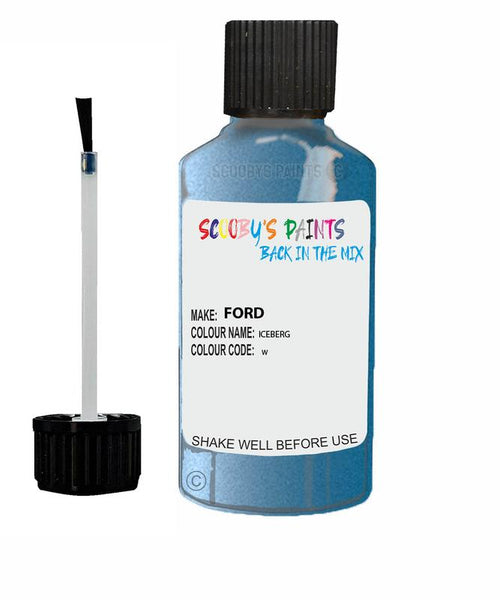 Ford Focus Iceberg Code W Touch Up Paint 2015-2020