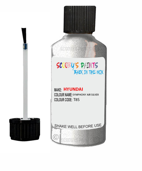 Hyundai Elantra Symphony Air Silver Code T8S Touch Up Paint 2015-2020