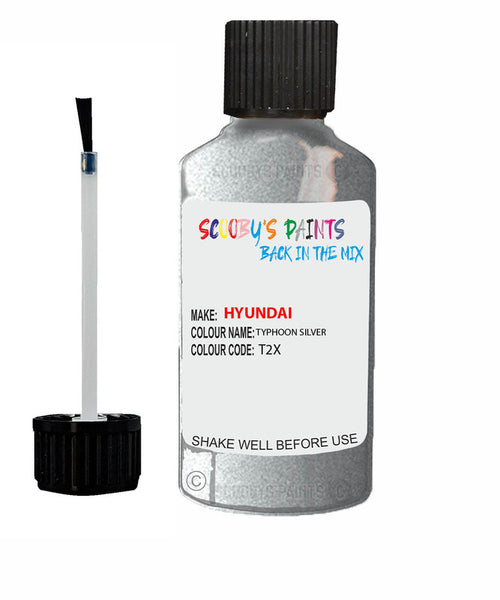 Hyundai Elantra Typhoon Silver Code T2X Touch Up Paint 2018-2020