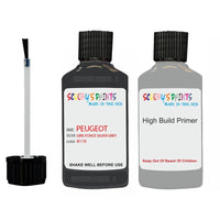 Peugeot Touch Up Paint With Primer Data Set 156