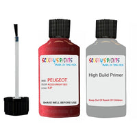 Peugeot Touch Up Paint With Primer Data Set 258