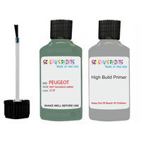 Peugeot Touch Up Paint With Primer Vert Aquarius Green