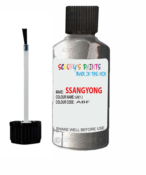 Ssangyong Chairman Grey 2 Abf Touch Up Paint