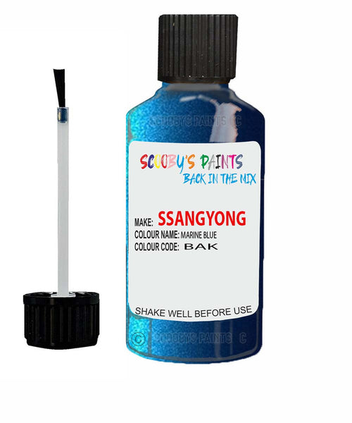 Ssangyong Actyon Marine Blue Bak Touch Up Paint