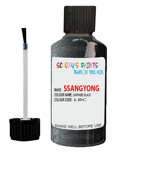 Ssangyong Chairman Sapphire Black Lbc Touch Up Paint