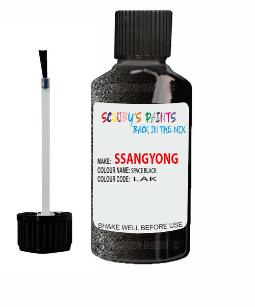 Ssangyong Musso Space Black Lak Touch Up Paint