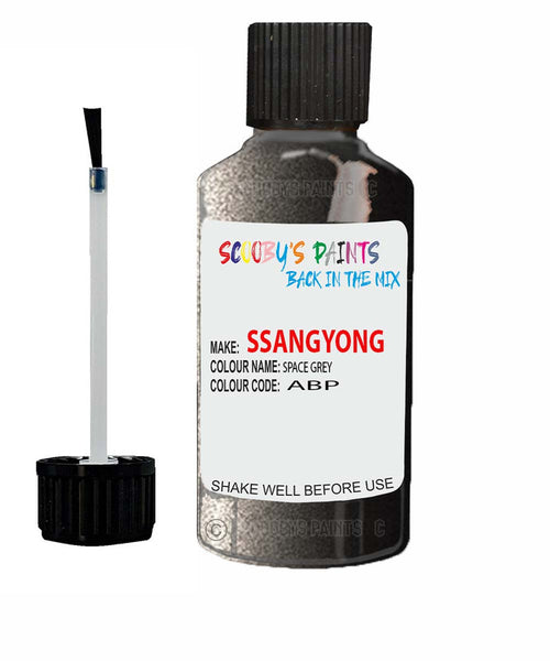 Ssangyong Rexton Space Grey Abp Touch Up Paint