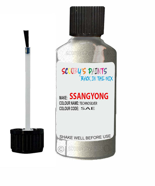 Ssangyong Actyon Technosilver Sae Touch Up Paint